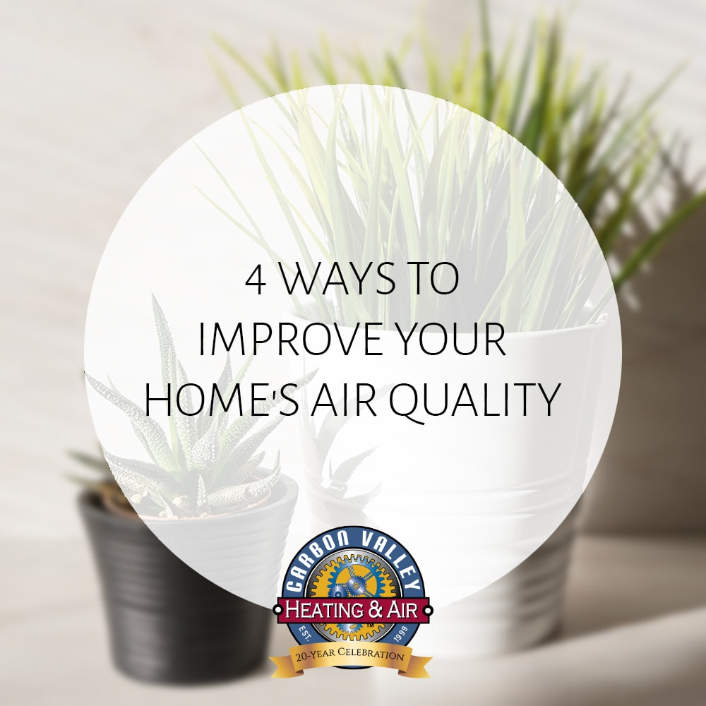 How to improve your homes air quality.