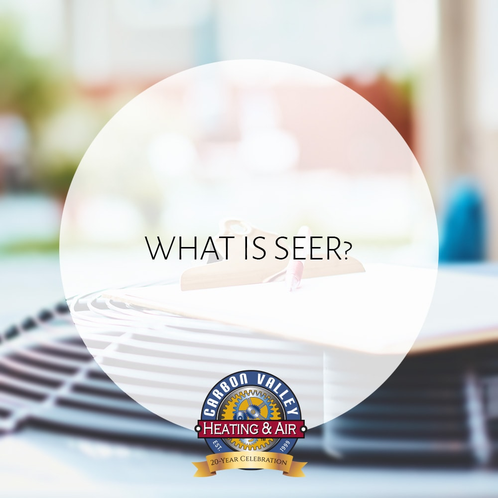 What is SEER?