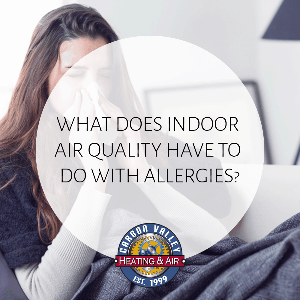 What Does Indoor Air Quality Have to Do With Allergies?