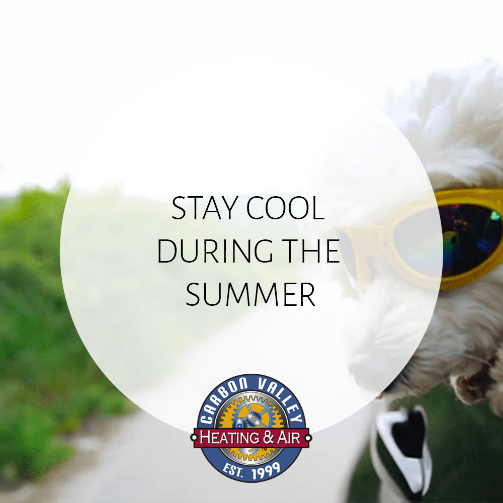 CVH August 2020. Stay Cool During the Summer.